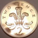Super Cameo Proof Great Britain 1993 2 Pence~Welsh Plume~Proof Are Best Coins~FS