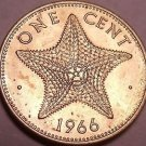 Unc Bahamas 1966 Cent~Starfish Coin~1st Year For Bahama Coinage~Free Shipping*