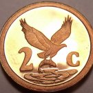 Rare Proof South Africa 1993 2 Cents~Eagle With Fish In Talons~7,790 Minted~Fr/S