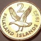 Large Unc Falkland Islands1992 Cents~Upland Goose~We Have Unc Coins~Free Ship