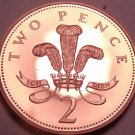 Cameo Proof Great Britain 2000 2 Pence~ICH DIEN~(I Serve)100,000 Minted~Free Shi