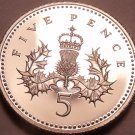 Proof Great Britain 2003 5 Pence~Fantastic Cameo Coin~Free Shipping