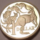 Cameo Proof Australia 1985 Dollar~Mob Of Kangaroo's~75,000 Minted~Free Shipping