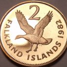 Rare Proof Falkland Islands 1982 2 Pence~Upland Goose~Only 5,000 Minted~Free Shi