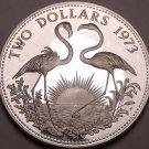 Silver Proof Bahamas 1973 2 Dollars~Only 50k Minted~Flamingos~Free Shipping