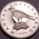 Large Rare Proof Hungary 2009-BP 50 Forint~Only 5,000 Minted~Saker Falcon~Fr/Shi