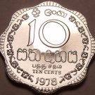 Rare Proof Sri Lanka 1978 10 Cents~Only 20,000 Minted~Scalloped~Free Shipping