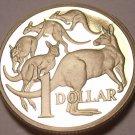 Cameo Proof Australia 1987 Dollar~Mob Of Kangaroo's~70,000 Minted~Free Shipping