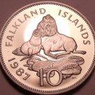 Rare Cameo Proof Falkland Islands 1987 10 Pence~2,500 Minted~Ursine Seal~Free Sh