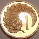 Rare Proof New Zealand 1973 Cent~Silver Fern Leaf~8,000 Minted~Free Shipping