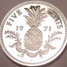 Rare Proof Bahamas 1971 5 Cents~Pineapple~1st Year Ever~31,000 Minted~Free Ship