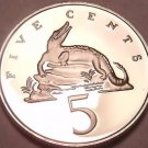 Rare Proof Jamaica 1978 5 Cents~Only 6,058 Minted~American Crocodile~Free Ship