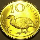 Large Gem Unc Gambia 1998 10 Bututs~Double Spurred Francolin~Last Year~Free Ship