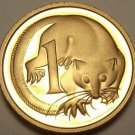 Cameo Proof Australia 1989 Cent~Feather-Tailed Glider~100,000 Minted~Free Ship