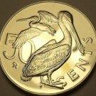 Rare Unc British Virgin Islands 1976-U 50 Cents~Pelican~Only 996 Minted~Free Sh