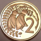 Rare Proof New Zealand 1981 2 Cents~Kowhai Leaves~Only 18,000 Minted~Free Ship