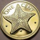 Rare Proof Bahamas 1977 Cent~Starfish~11,000 Minted~Free Shipping