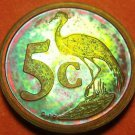 Rare South Africa 1992 Proof 5 Cents~10k Minted~Blue Craine~Rainbow Toned~Fr/Shi