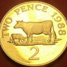 Extremely Rare Cameo Proof Guernsey 1988 2 Pence~2,500 Minted~Guernsey Cows~Fr/S