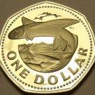 Barbados 1977 Dollar Rare Proof~5,014 Minted~Flying Fish~Free Shipping