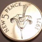 Guernsey 5 New Pence, 1971 Rare Proof~10,000 Minted~Guernsey Lily~Free Shipping