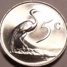 South Africa 1988 5 Cents Rare Proof~Only 7,250 Ever Minted~Blue Crane~Free Ship