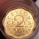 Gem Unc Roll (40) Ceylon 1955 2 Cent Coins~Rare~Scalloped~Free Shipping
