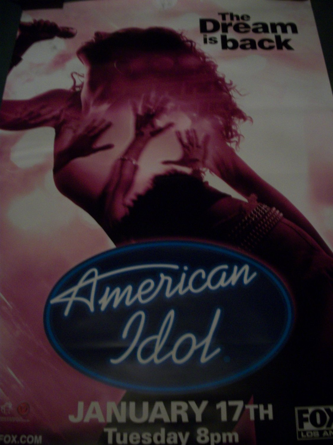 American Idol TV show Pink Female Poster Approx. 4 feet by 5 feet 9 inches