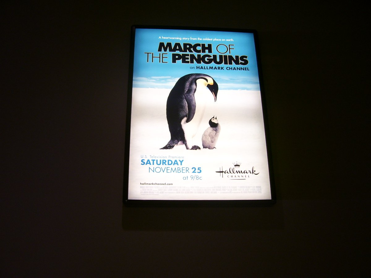 March of the Penguins Original Movie Poster Approx. 48 X 69