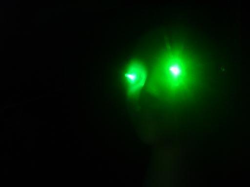 GREEN LEDs Spooky Halloween LED Eyes