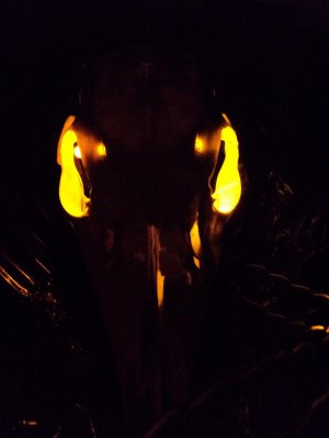 NEW!!  YELLOW LEDs Spooky Halloween LED Eyes