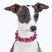 Pink/Purple Pooch Necklace