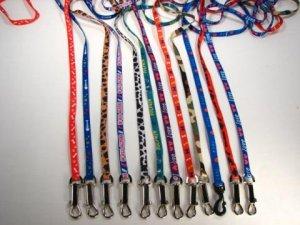 Pooch Leash & Matching Harness Set
