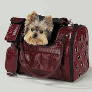 Chocolate Pooch Carrier