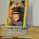 VHS - NAT GEO - ETERNAL ENEMIES: LIONS AND HYANES