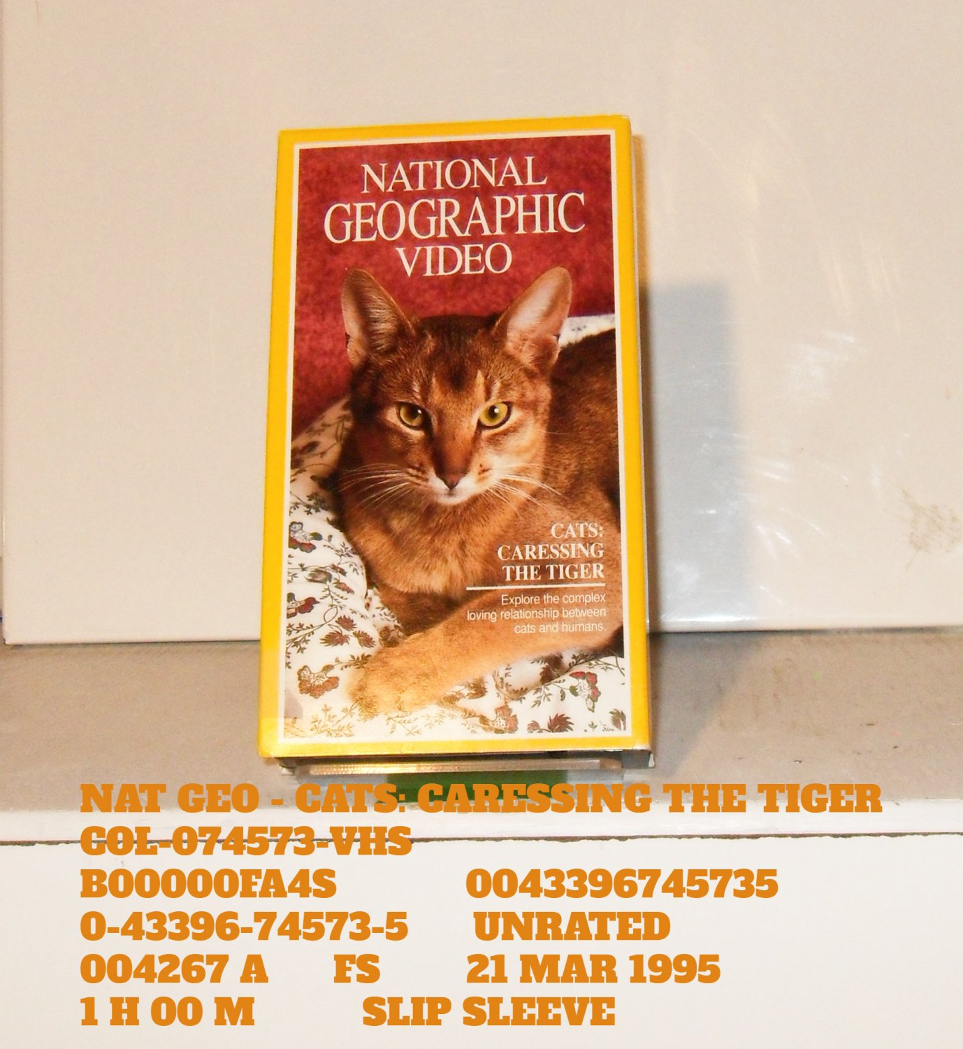 VHS - NAT GEO - CATS: CARESSING THE TIGER