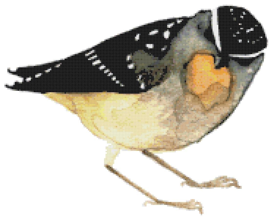 """watercolor Spotted Pardalote Counted Cross Stitch pattern - 13.36"""" x 10.79"""" - E1666"""