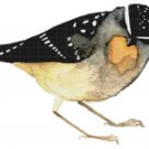 "watercolor Spotted Pardalote Counted Cross Stitch pattern - 13.36"" x 10.79"" - E1666"