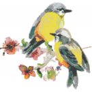 "watercolor couple birds Counted Cross Stitch pattern - 10.50"" x 9.79"" - E1709"