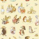 counted cross stitch pattern The world of B. potter 238*337 stitches 273 *395 stitches E1759