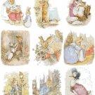 Counted cross Stitch Pattern nine beatrix potter world 287 *350 stitchesE1480