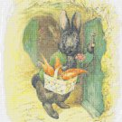 counted cross stitch pattern rabbit potter pdf 193*255 stitches E1836