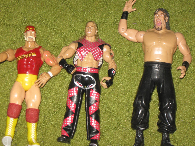 Jakks WWE Wrestler Bundle