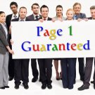 I will get your Website on Google Page 1 with my SEO