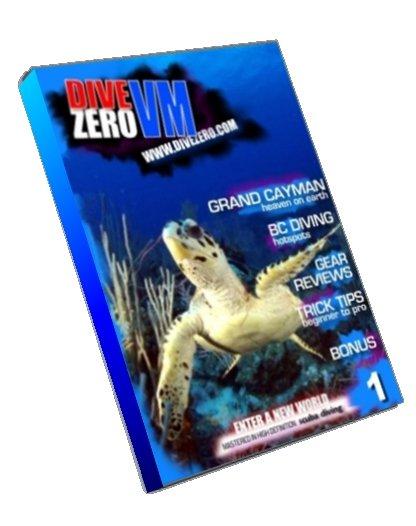 DVD Issue #1