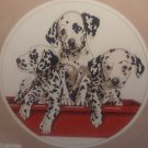 Sunset Cross Stitch Kit Dalmatian Trio by Linda Picken Dogs Puppies No Count