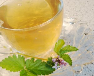 Natural BERRY BLOSSOM Herbal Tea ( Custom Blend ) - 10 tea bags ~gemsandstems.info~
