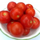 Heirloom GRANDPA'S MINNESOTA Tomato ( Solanum lycopersicum ) - 15 seeds  ~gemsandstems.info~