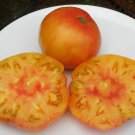 HILLBILLY Tomato ( Solanum lycopersicum ) - 15 seeds  ~gemsandstems.info~