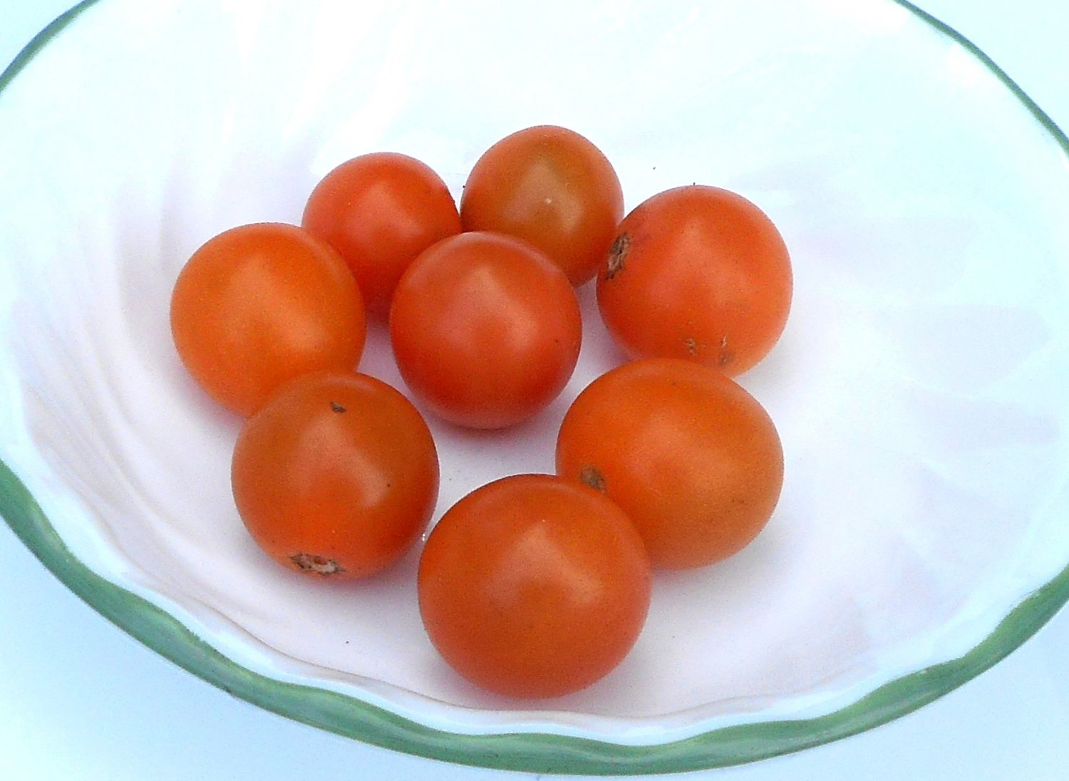 tomato sex personals Sex & dating style travel marketplace slice of life: the search for tomato pie updated: well, tomatoes fresh tomatoes, salt.